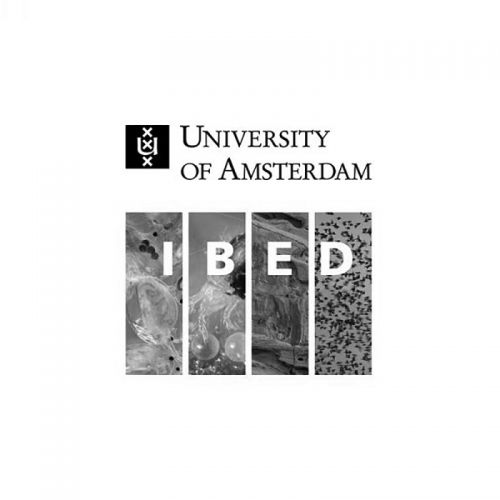 The University of Amsterdam